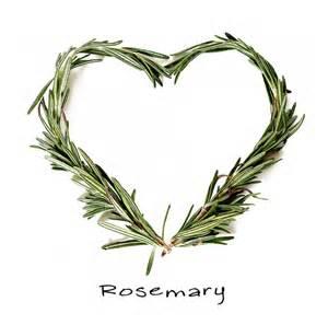 rosemary heart